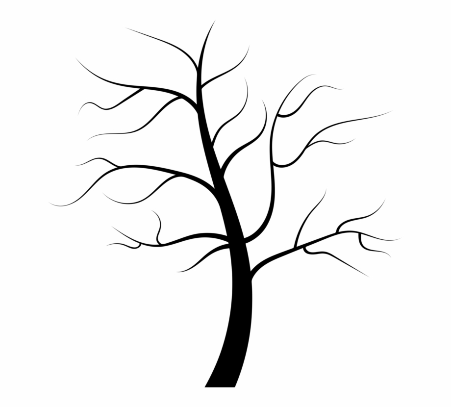 Tree Root Trunk Juglans Evergreen - Tree No Leaves Clipart ...