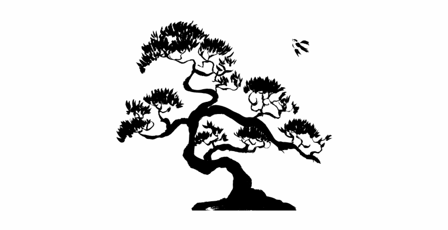 Clip Art Royalty Free Download Bonsai Drawing Color Black And White Bonsai Tree Transparent Png Download 1155934 Vippng