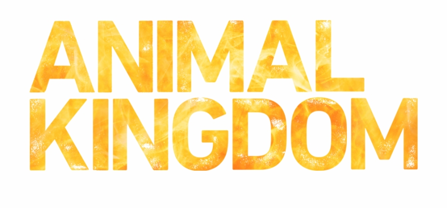 Tntdrama Com Animal Kingdom Tnt Logo Transparent Png Download 1183323 Vippng