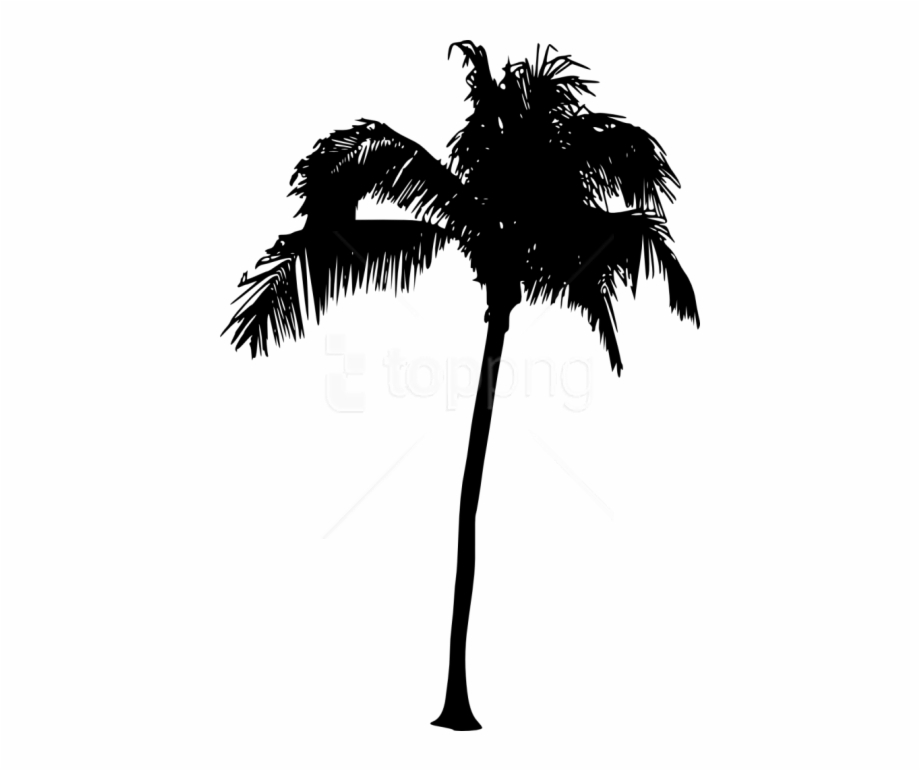 Tree Free Images Toppng - Palms Tree Vector Png