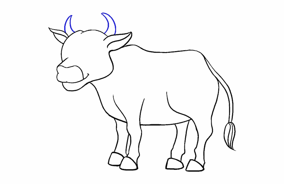 Support Drawing Jallikattu Drawing Of Cow Transparent Png Download 1366337 Vippng