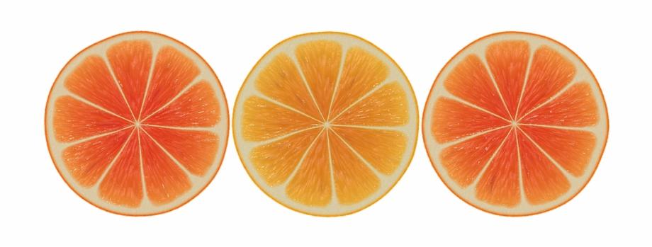 Orange Slices Design Abstract Banner Vector Fruit