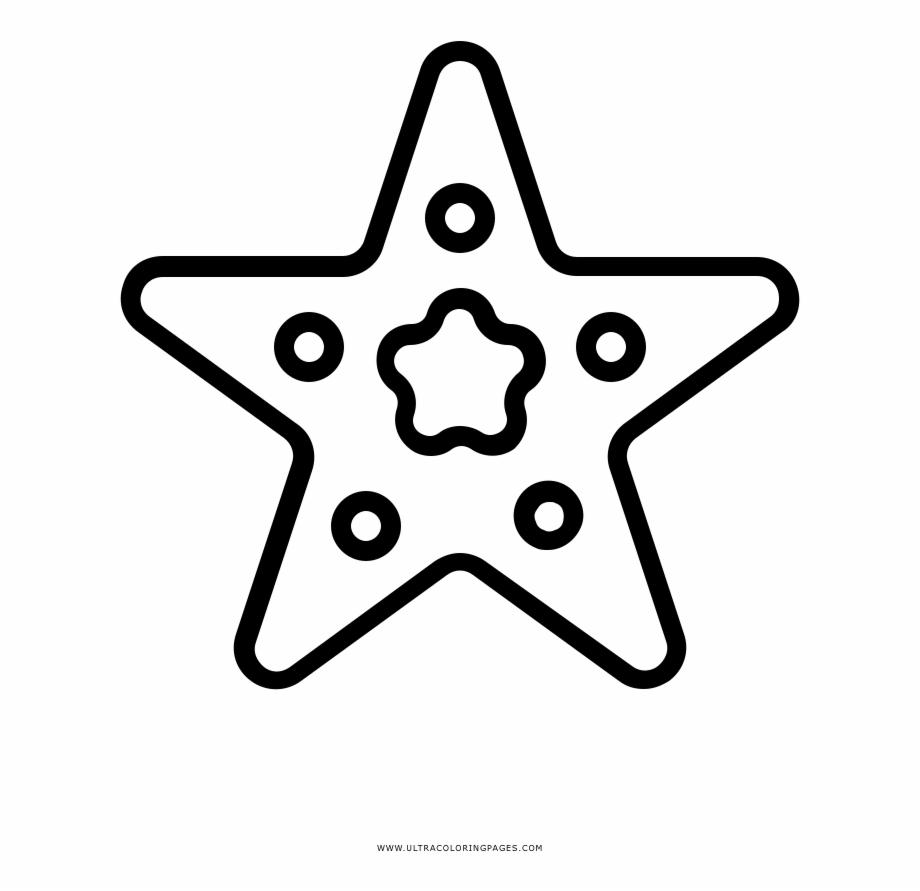 Dibujo De Estrella De Mar Para Colorear Dibujos De