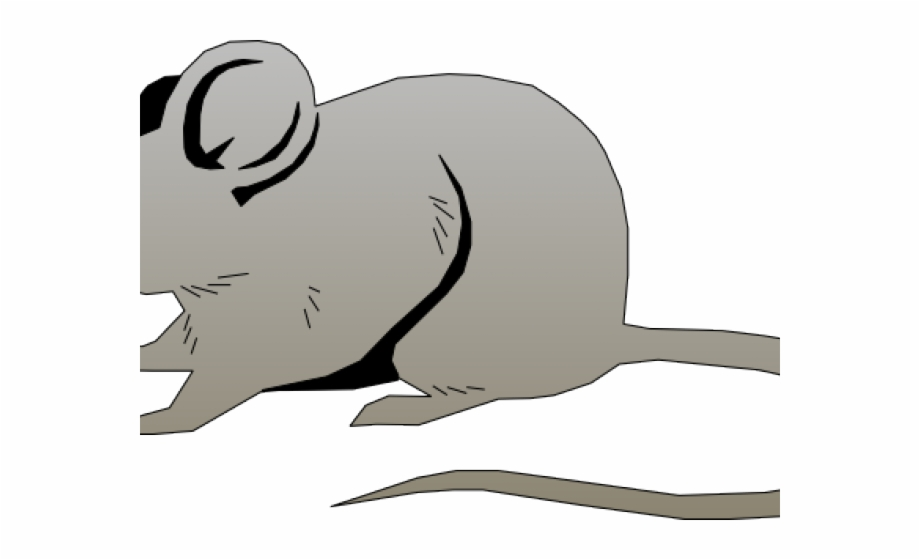 Mouse clipart free clip art images image 4 - Cliparting.com