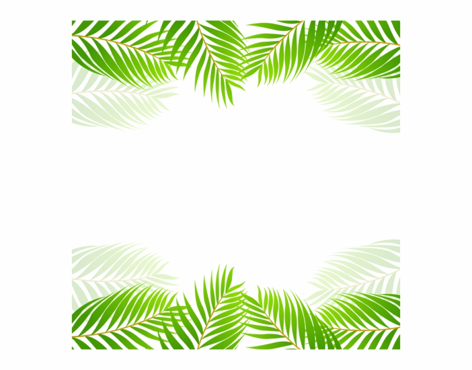 Leaf Borders Png Tropical Leaves Border Png Transparent Png Download 172121 Vippng What's included 6 large files 300dpi in the following sizes. leaf borders png tropical leaves