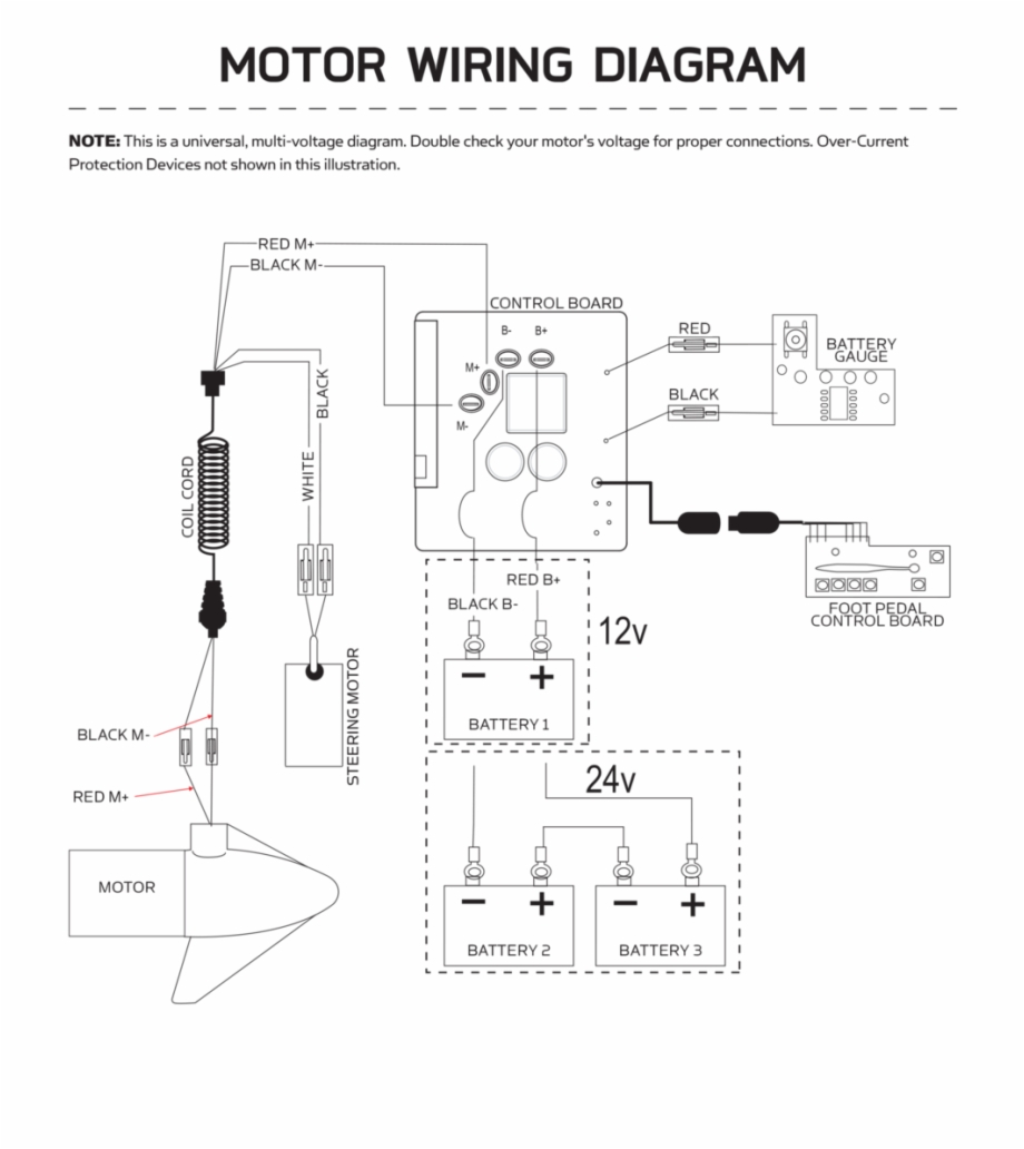 DIAGRAM] Minn Kota Maxxum Wiring Diagram FULL Version HD Quality Wiring  Diagram - VALUESDIAGRAM.PRIMOCIRCOLOUMBERTIDE.IT  primocircoloumbertide.it