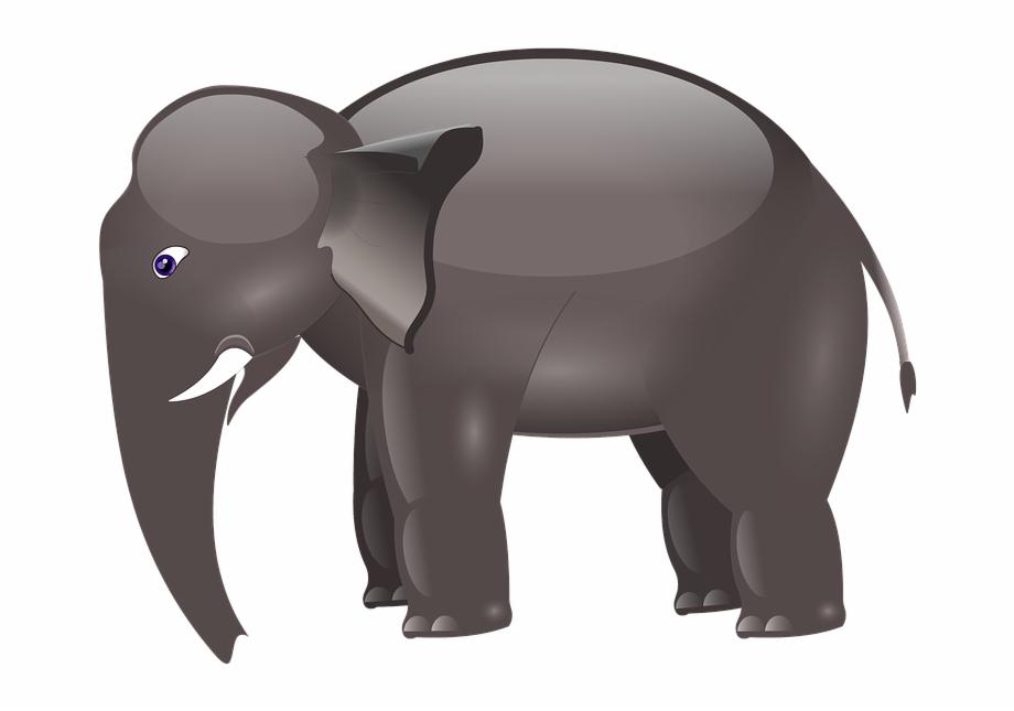 Cartoon Elephants Pictures Elefante De Desenho Animado