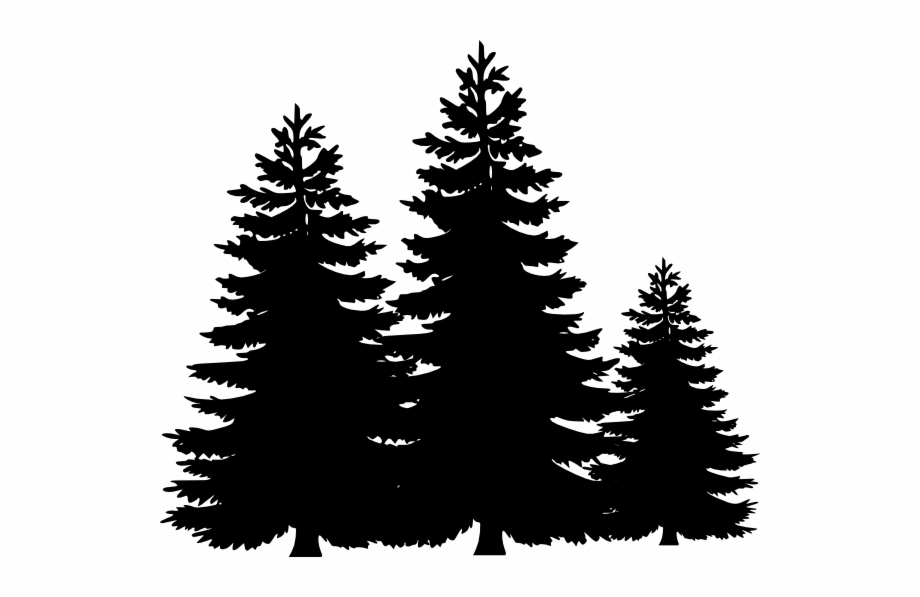 Christmas Tree Clipart Black And White.Black And White Pine Tree Clipart 6066 Pine Trees Clip