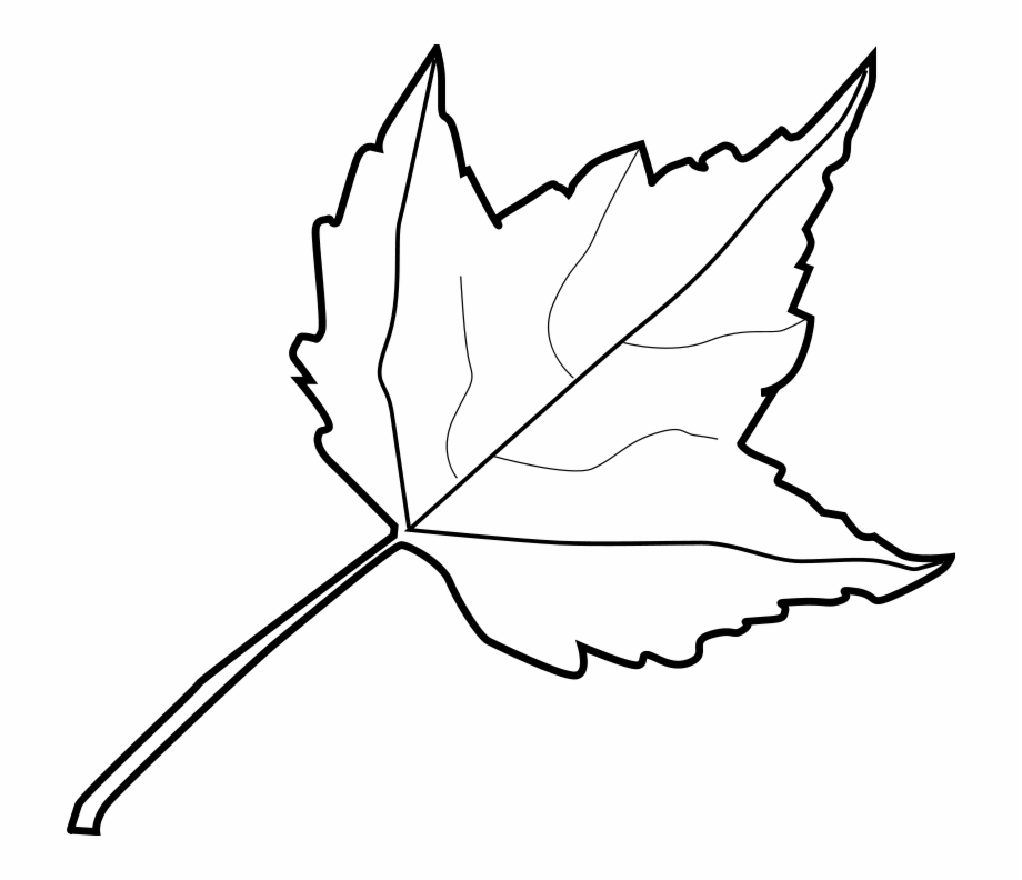 Pin oleh Kharien' Zha di Bunga kertas (Dengan gambar) | Bunga ... | 792x920