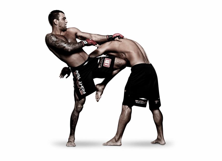 Mixed Martial Arts Fight Png Pic Mixed Martial Arts Png Transparent Png Download 2093409 Vippng