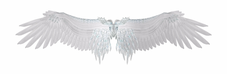 Wing White Feather Angel Wings Png Image Angel Wings Pixel