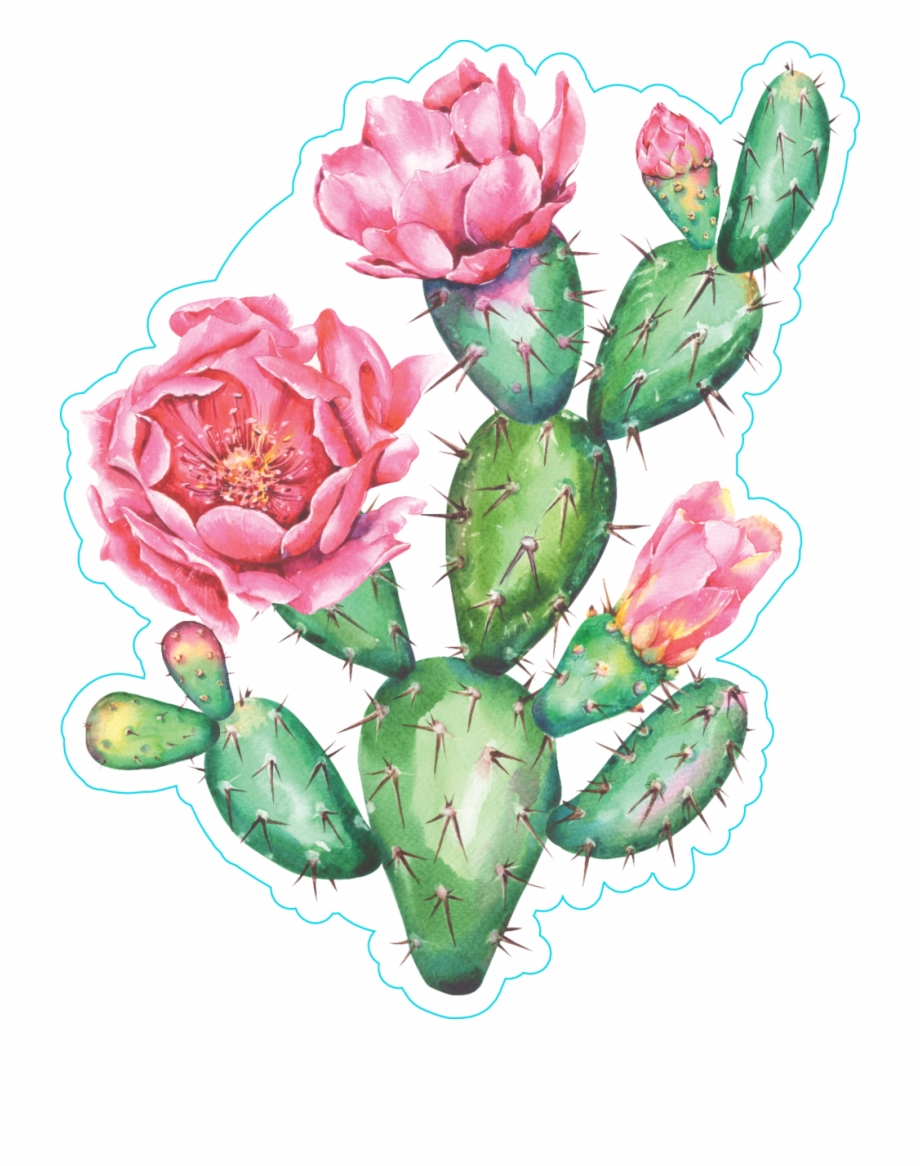 Watercolor Cactus With Beautiful Pink Flowers Sticker High Resolution Watercolor Cactus Transparent Png Download 2126994 Vippng