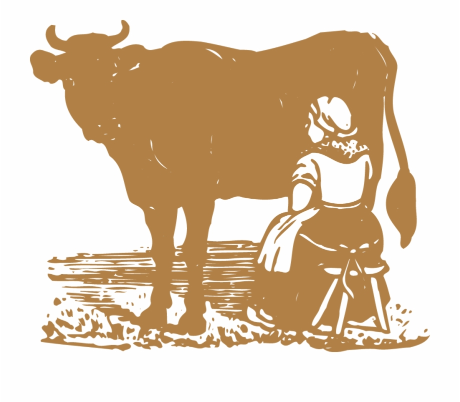 Clip Art Collection Of Free Cow - Gir Cow Images Png , Free Transparent  Clipart - ClipartKey