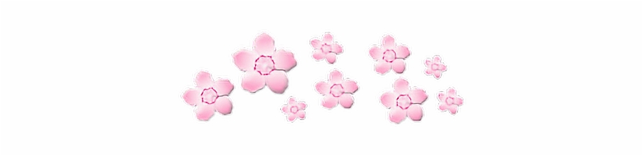 Flower Crown Pink Soft Pinkaesthetic Transparent Cute Transparent Pink Aesthetic Stickers Transparent Png Download 266943 Vippng