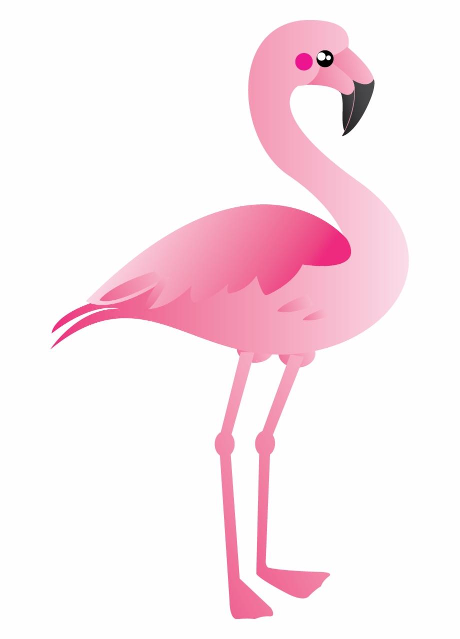Flamingo Bird Clipart Wallpaper 1080p Flamingo Clipart