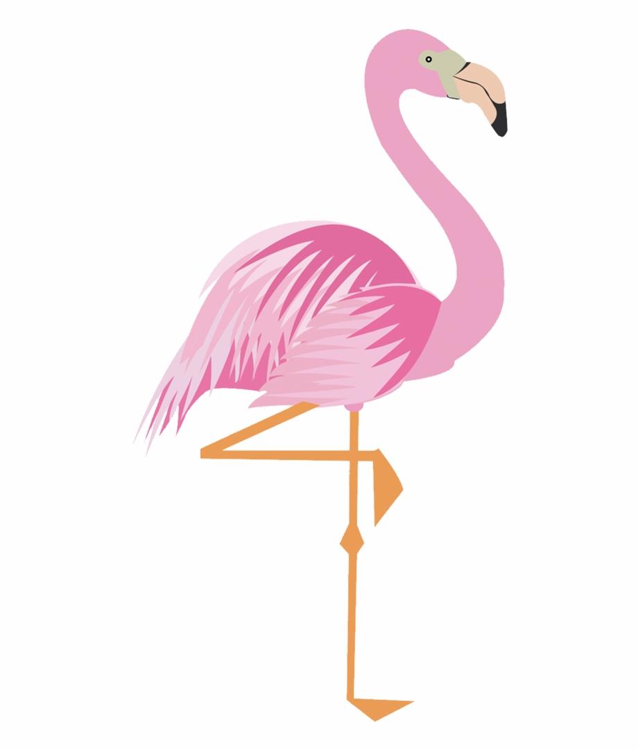 Drawing Flamingos Png Imagem De Flamingo Para Imprimir