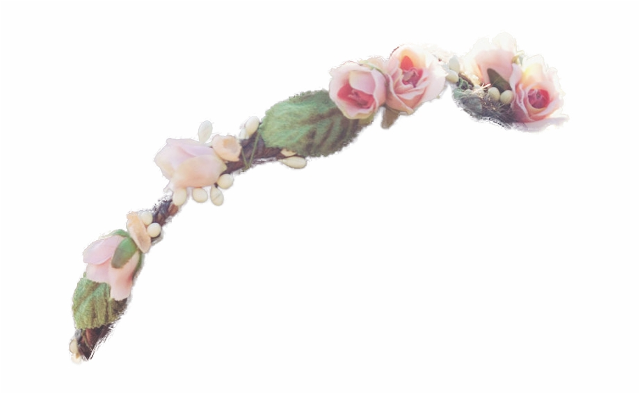 Crown Transparent Totally Transparent - Flower Crown For