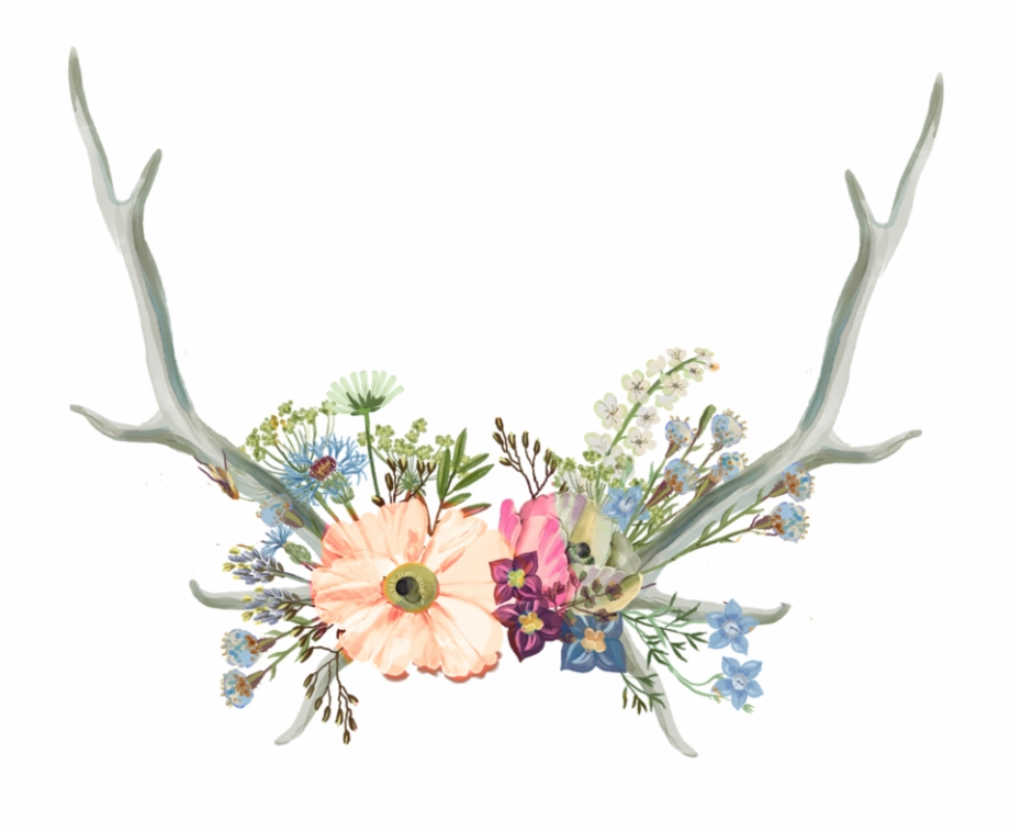 Flower crown aesthetic. Antler clipart png