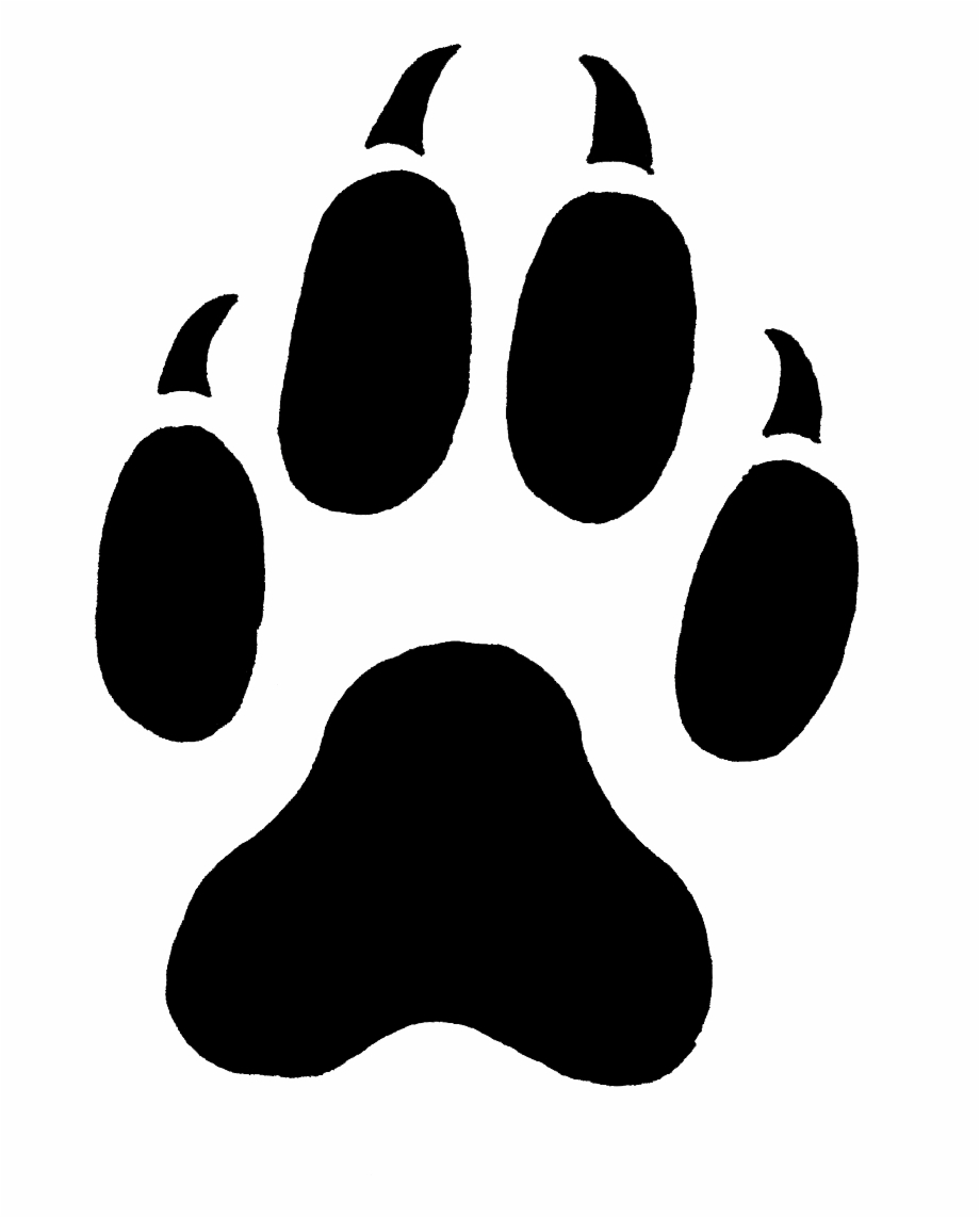 Wolf Print Png Paw Print Pumpkin Carving Stencil Transparent Png Download 35620 Vippng The most common fox paw prints material is metal. wolf print png paw print pumpkin