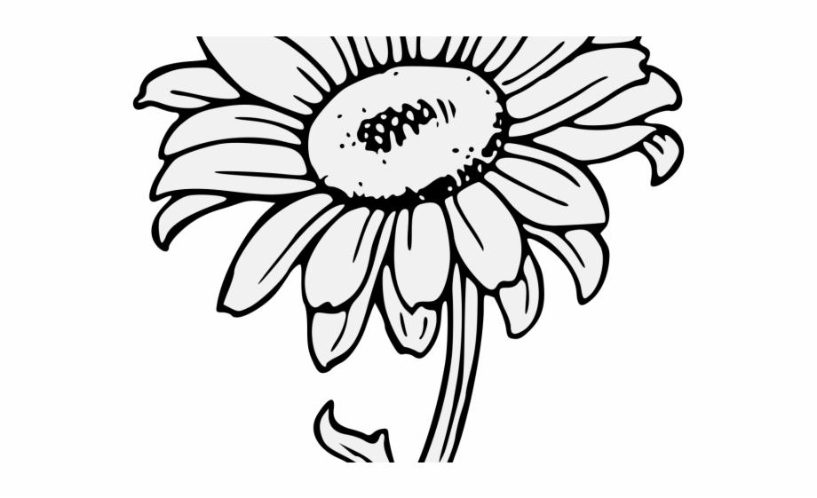 Clip Art - Clip art sunflower 389180   Sun clip art, Sunflower art, Clip art  vintage