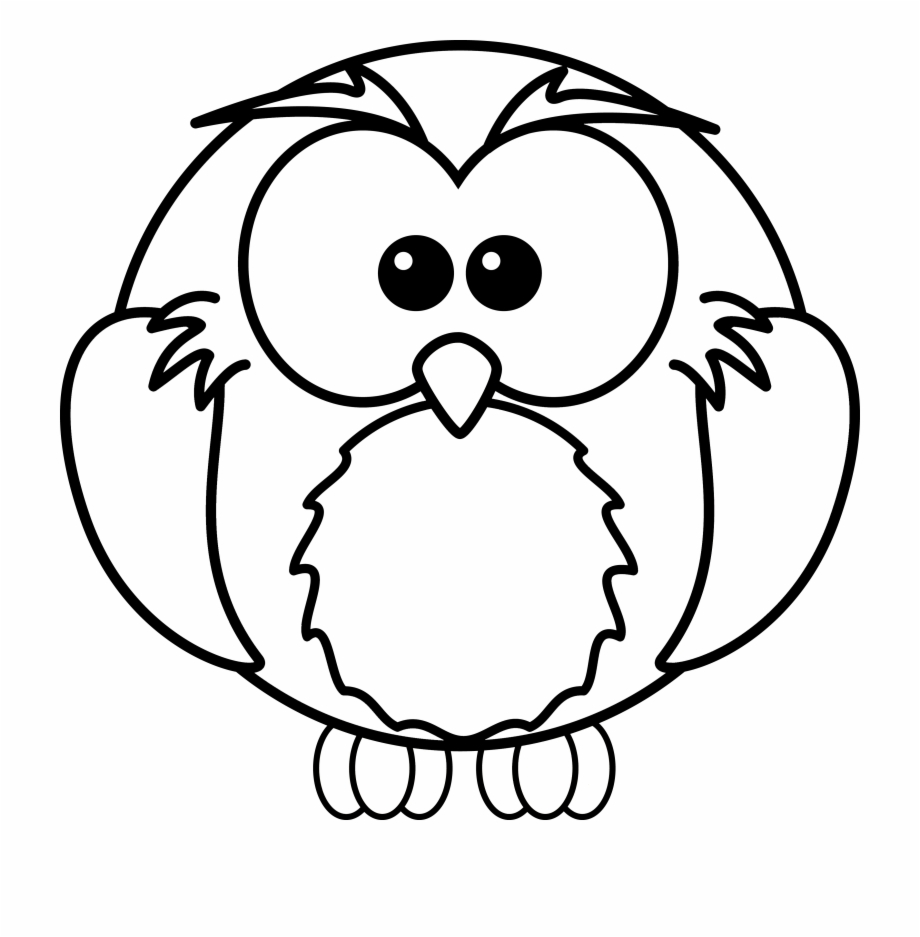 Images For Flying Snowy Owl Clipart High Resolution Coloring