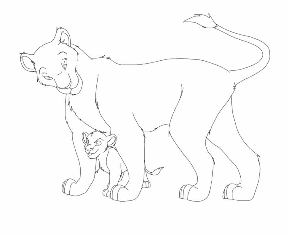 Lion Cub Drawing Outline : Lion cub drawing easy | free download on clipartmag.