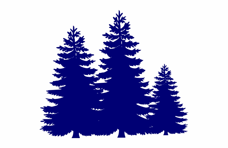 White Christmas Tree Png.Pine Trees Svg Clip Arts 600 X 517 Px Pine Tree Png Vector