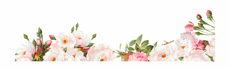 Watercolor Flower Border Png
