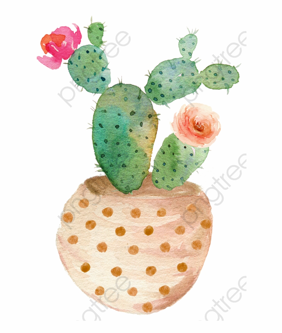 Sen Department Aesthetic Hand Cactus And Succulents Art Transparent Png Download 4130504 Vippng