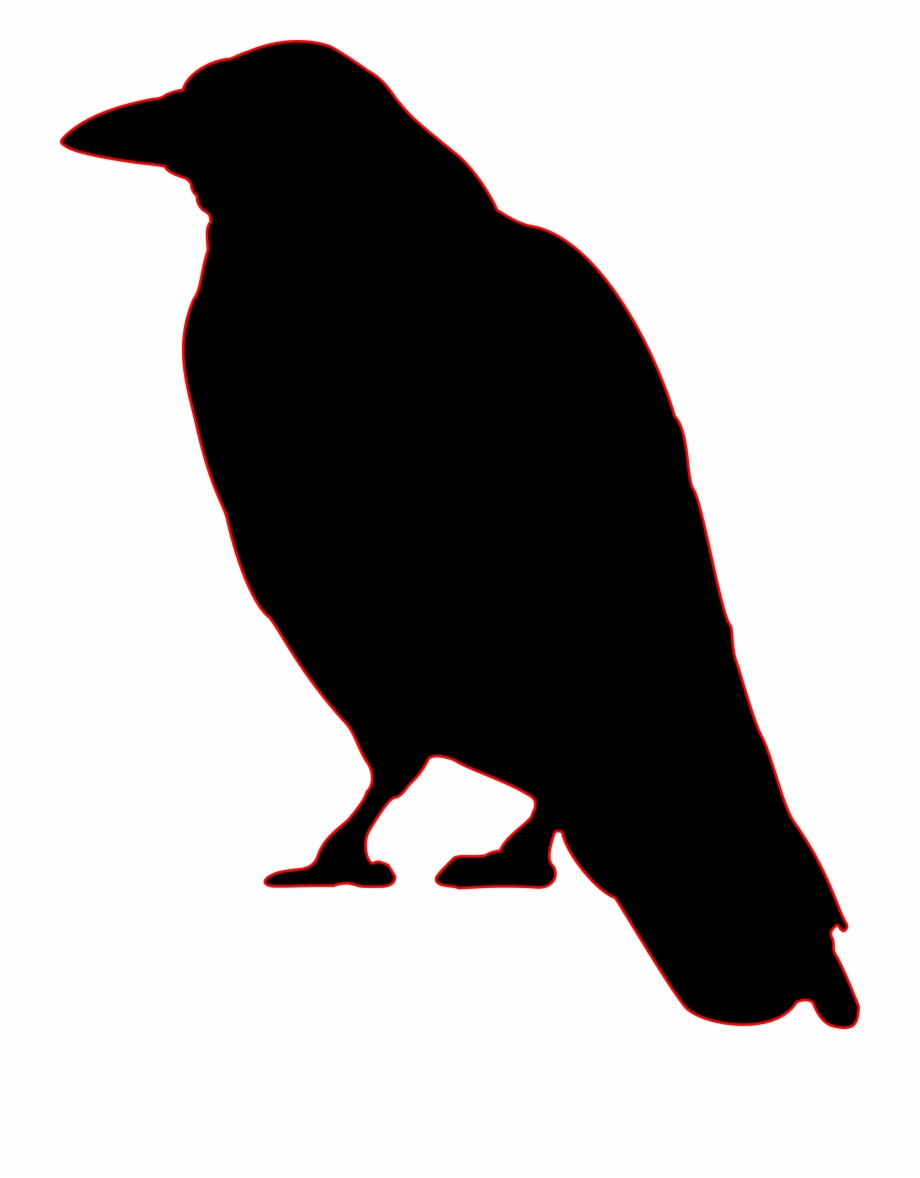 Crow Png Crow Clip Art Transparent Png Download 429235 Vippng