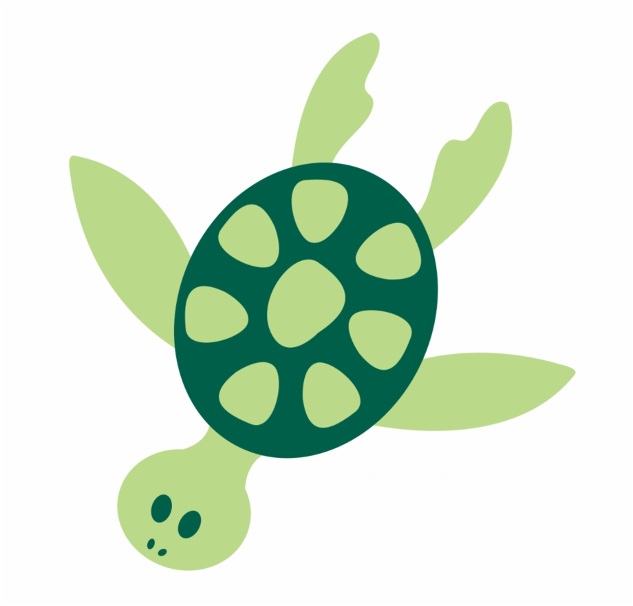 Turtles How To Draw A Cartoon Sea Turtle Clipart Png