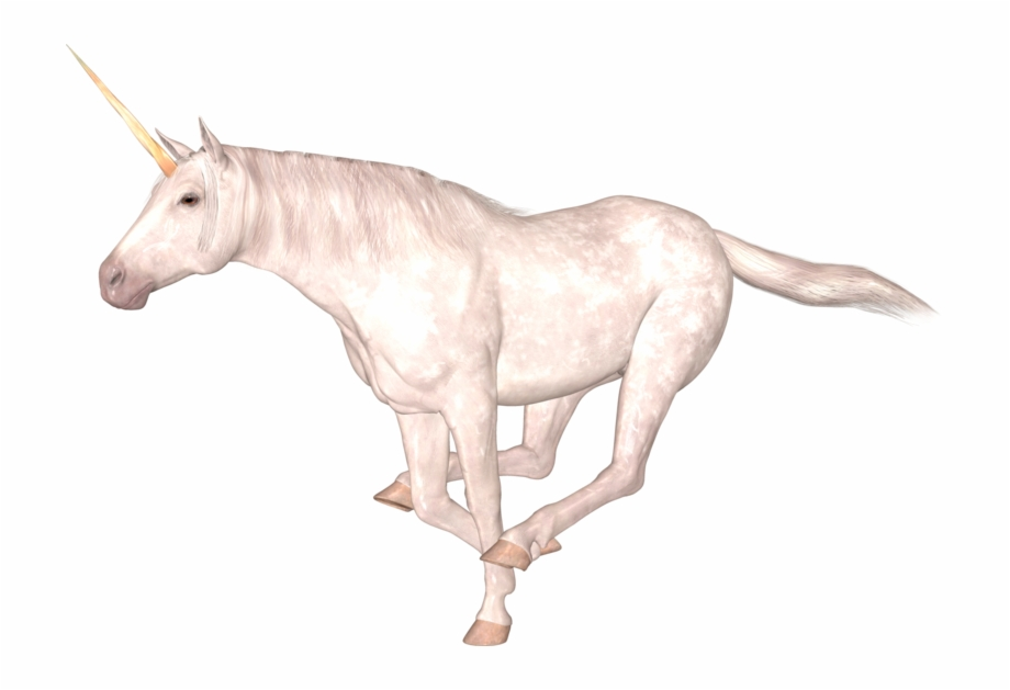 Unicorn Png Download Png Image With Transparent Background
