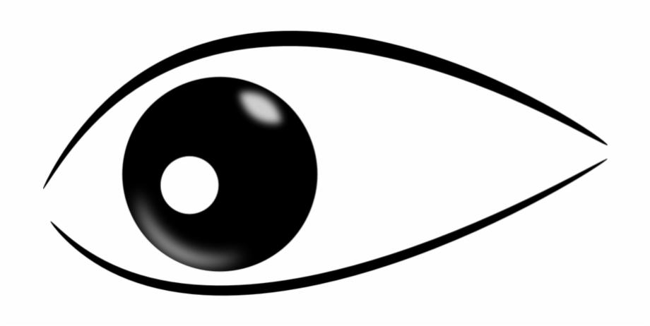 Pupils Eye Look Sight Wat Shark Eyes Clip Art Transparent Png Download 4410905 Vippng