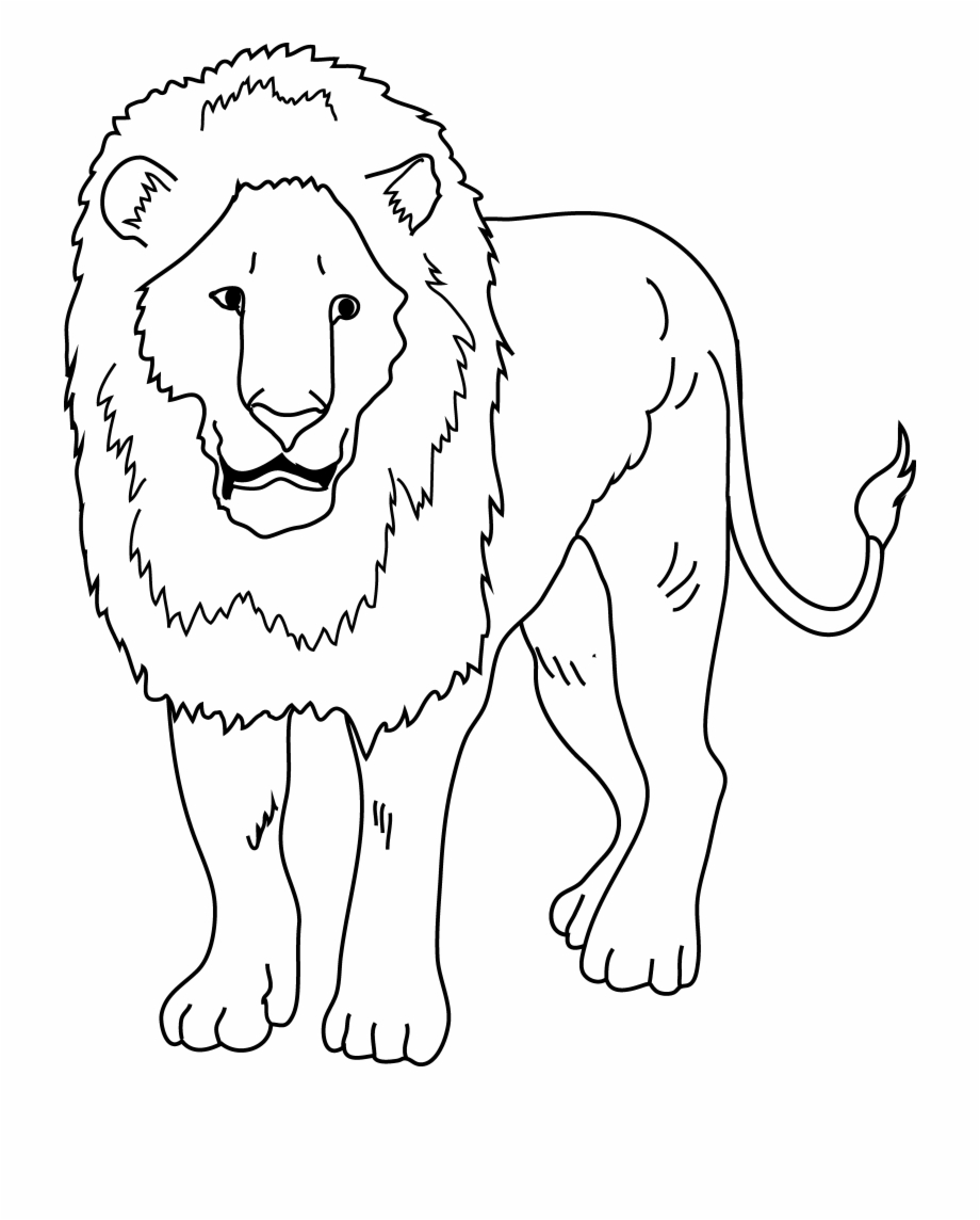 Spectacular Lion Clip Art Black And White Coloring Lion Clipart Black And White Png Transparent Png Download 457788 Vippng Circus lion icon isolated on white background. lion clipart black and white png