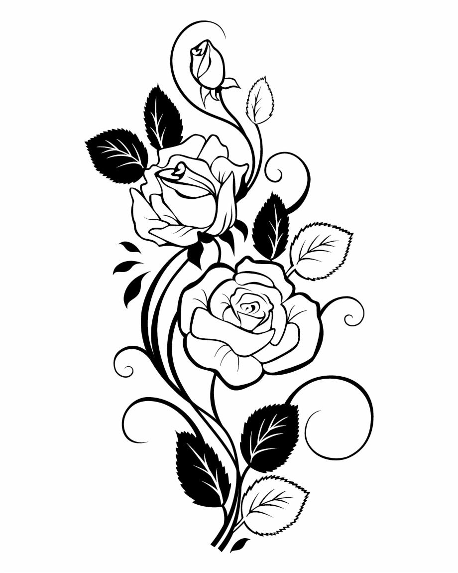 Lemon Drawing Vine Rose Flower Design