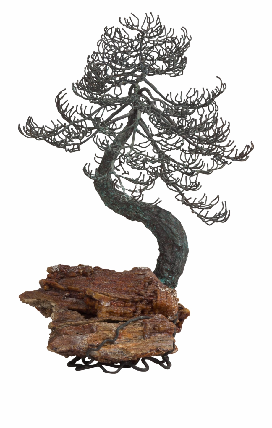 Bonsai Trees Drawings Jack Pine Transparent Png Download 4590233 Vippng