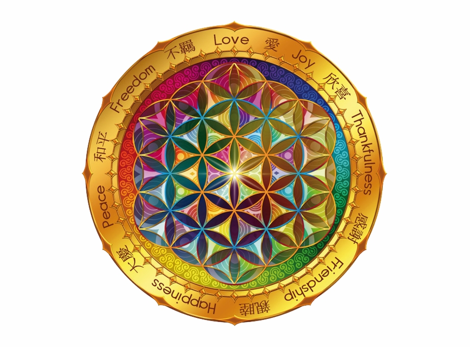 Flower Of Life Wallpaper Picserio Flower Of Life Love Transparent Png Download 5092254 Vippng