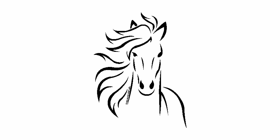 Equine Raindrop Massage Running Horse Silhouette Outline Transparent Png Download 519554 Vippng