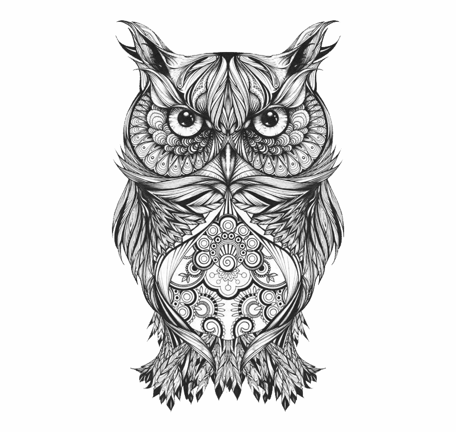 Body Owl Sketch Art Tattoo Drawing Clipart - Owl Drawings ...