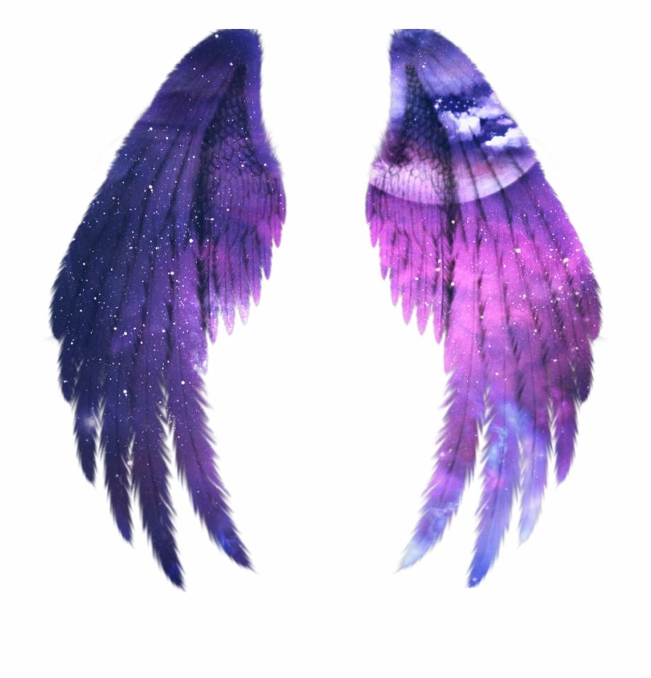 Wings Galaxy Alas Fairy Gold Angel Wings Png Transparent