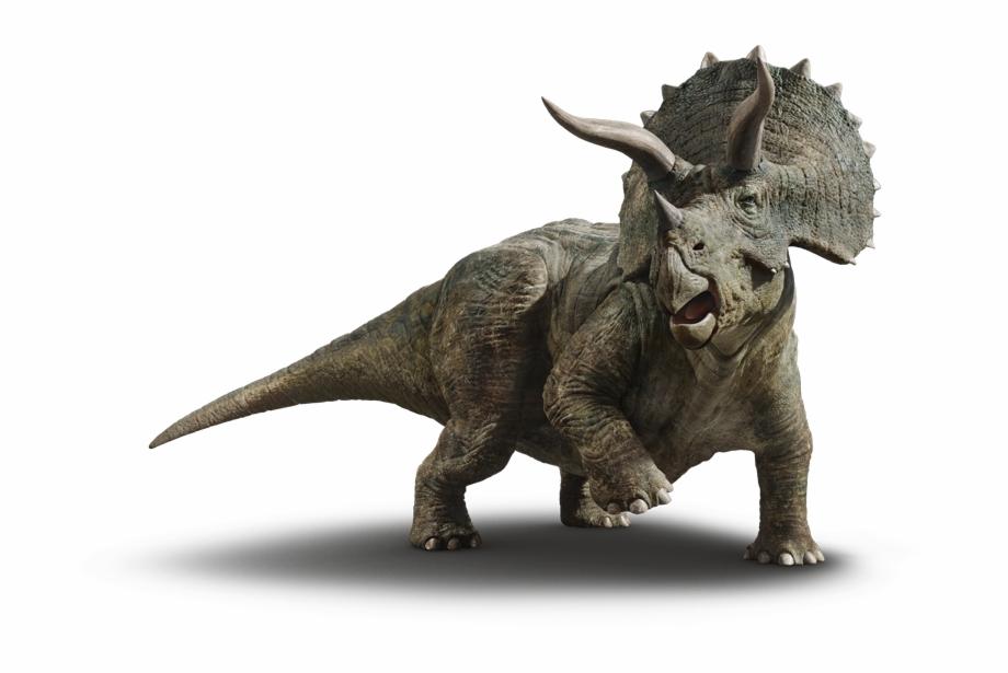 динозавр трицератопс картинки на белом фоне