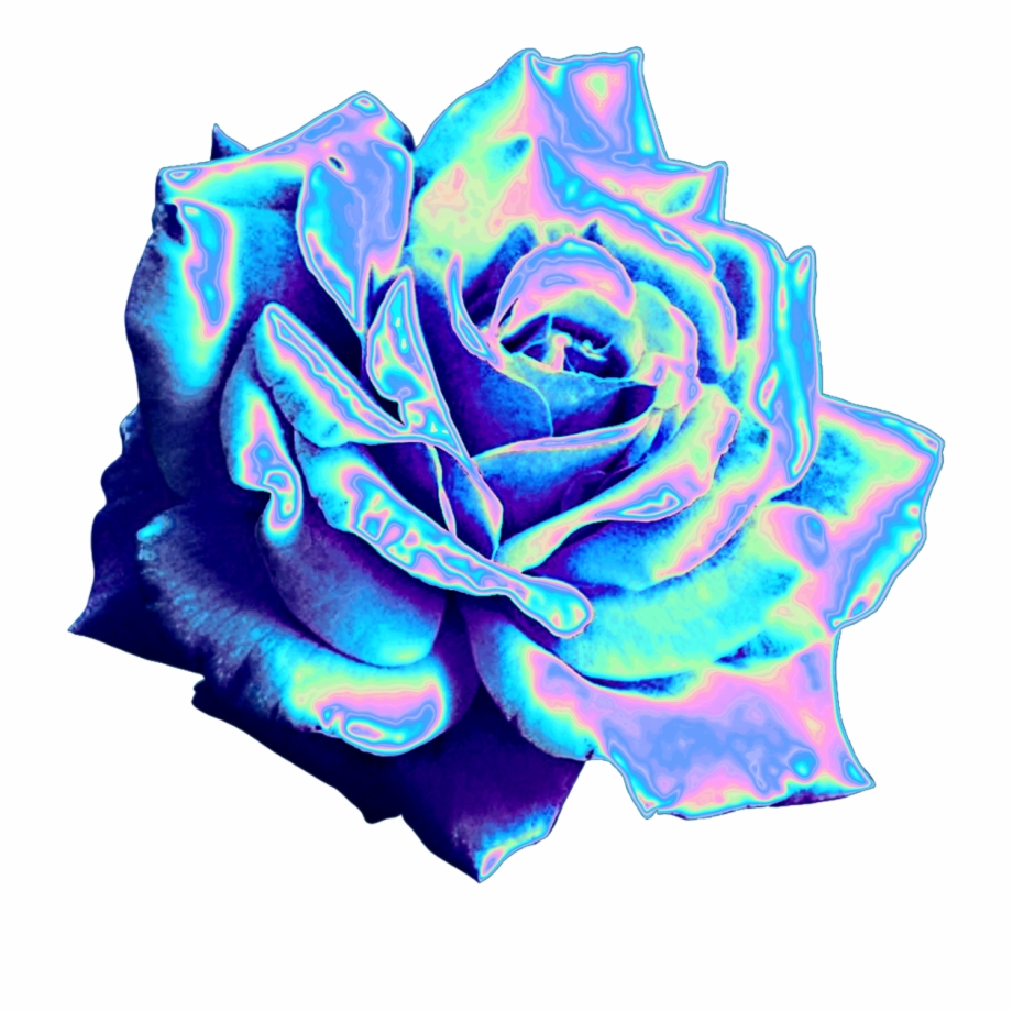Blue Flower Aesthetic Png Transparent Png Download 72769 Vippng