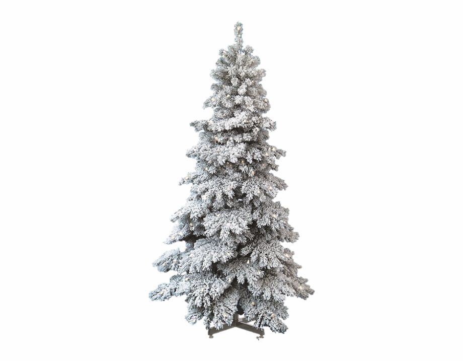 Christmas Trees Png.Snow Covered Trees Png Christmas Tree Snow Png