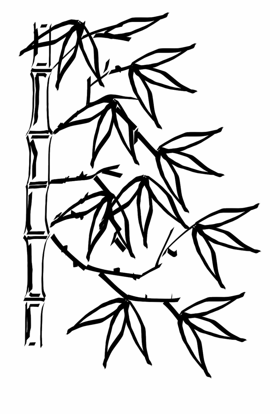 Bamboo Plant Leaves Chinese Png Image Bamboo Black And White Transparent Png Download 924887 Vippng