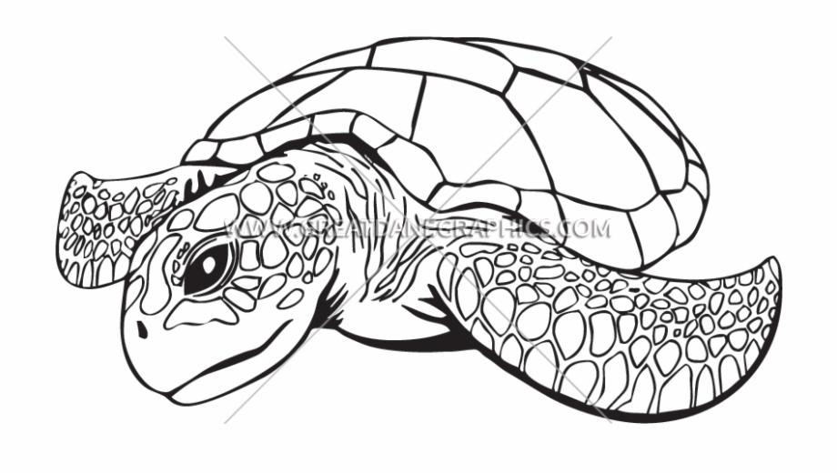 Clip Royalty Free Download Line Drawing At Getdrawings Sea