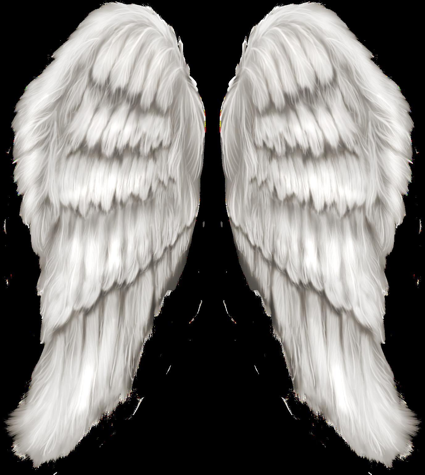 один раскрытые крылья ангела картинки должны знать