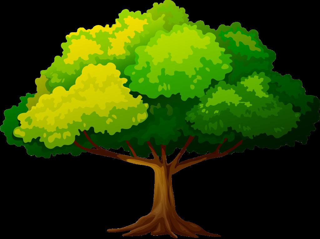 Крона дерева картинка нарисованная