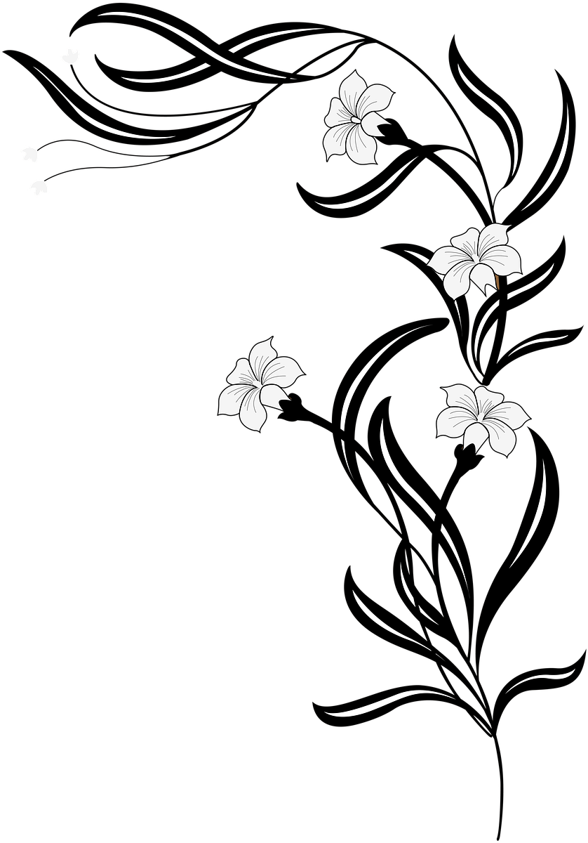 длинный цветок рисунок знакомая рассказала