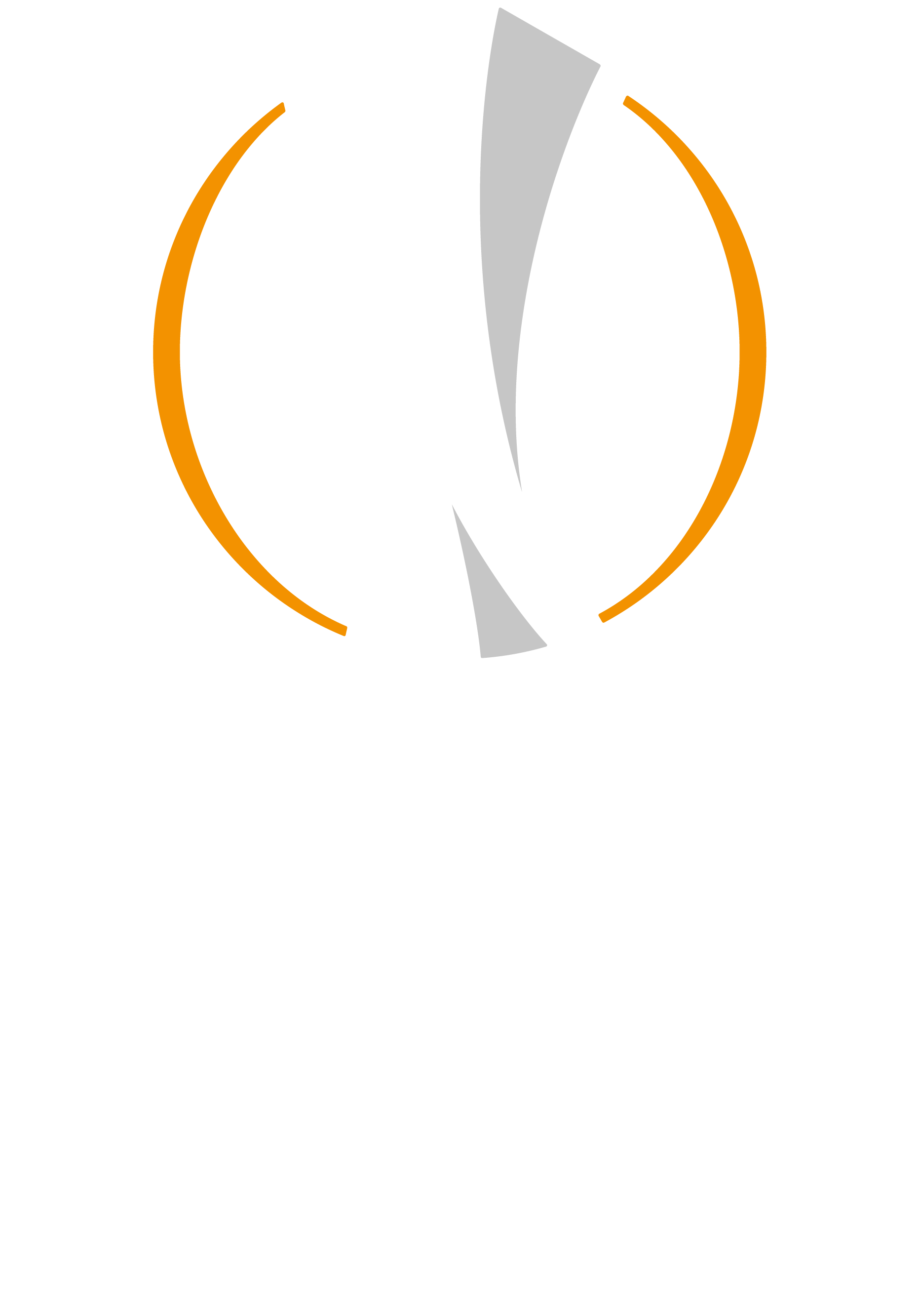 uefa champions league trophy png europa league transparent 2001122 vippng uefa champions league trophy png