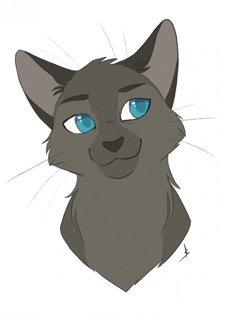 Cat Drawing Png Permalink To 100 Good Warrior Cat Drawings Inspiration Anime Warrior Cat Drawing 5210464 Vippng